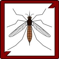 parazitaellenes szer